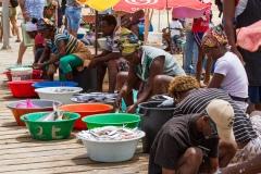 29.Rybí trhy